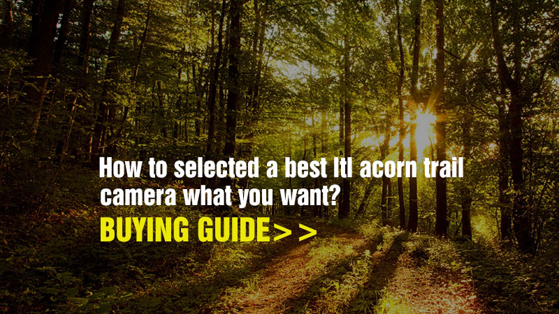 selected-ltl-acorn-camera